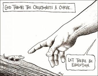 Life is Evolution thumbnail