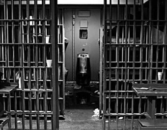 Jailbirds thumbnail